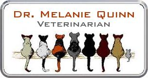 Colordome Veterinary Namebadges